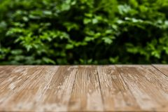Empty rustic wood table top on blurred parsley  background in th Royalty Free Stock Photo
