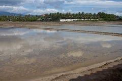 Empty salt fields Royalty Free Stock Photo