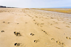Empty sand beach of english channel Royalty Free Stock Photography