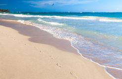 Empty sandy beach with footsteps in sand Royalty Free Stock Photography