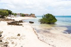 Empty sandy beach of Mozambique island, mangroves and remains of a colonial house, Indian ocean. Nampula. Portuguese East Africa. Empty sand beach of Mozambique stock photography