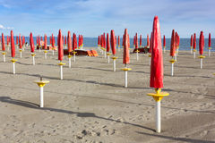 Empty Sandy Beach. With rows of closed red umbrellas Stock Image