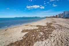 Empty sandy Mediterranean beach. In spring sunshine in Majorca, Spain Stock Photography