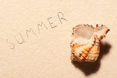 Empty sea shell and summer lettering drawn on sand Royalty Free Stock Photo