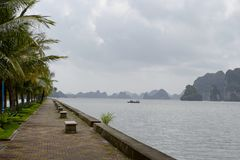 Empty seafront with palm trees and benches. With view to Halong Ha Long Bay - UNESCO World Heritage Site and popular travel destination. Vietnam stock images