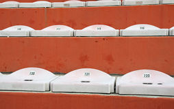 Empty seats in the stands of the stadium Stock Image