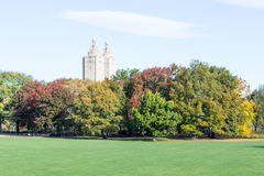 Empty Sheep Meadow during a morning in the fall Stock Image