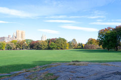 Empty Sheep Meadow during a morning in the fall Royalty Free Stock Photography