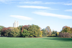 Empty Sheep Meadow during a morning in the fall Stock Photography