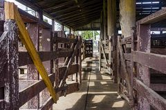Empty sheep pens at saleyards. Undercover pens for holding sheep being sold by auction at sales yards in Australia royalty free stock images