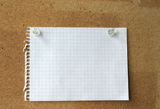 Empty sheet on a corkboard. Photo of a piece of squared paper taken out of a spiral notebook, the paper is pinned to a cork board, the photo is ideal as Royalty Free Stock Images
