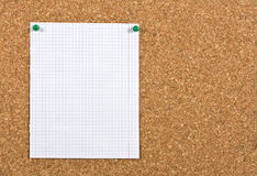 Empty sheet on a corkboard. Piece of squared paper taken out of a notebook, the paper is pinned to a cork board, the photo is ideal as background for Stock Image