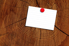 Empty sheet on wood texture Royalty Free Stock Image
