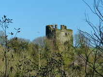 Empty Shell of a castle tower Ireland surrounded by tree branches Stock Photography