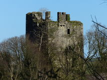 Empty Shell of a castle tower Ireland surrounded by tree branches Royalty Free Stock Image