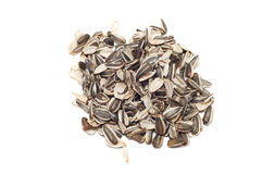 Empty shells of sunflower seeds isolated on white. Background Royalty Free Stock Photo