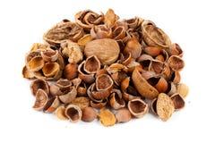 Empty shells of walnuts hazelnuts almonds Royalty Free Stock Photography