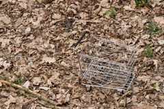 Empty shopping cart in autumn leaves. Autumn shopping Royalty Free Stock Photos