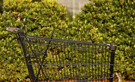 Empty shopping cart. Sell supermarket Royalty Free Stock Photo