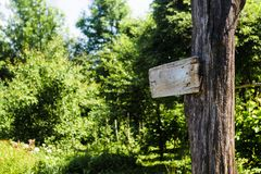 Empty sign directions on a tree in a green summer forest. Self-made rectangular board form pointer with space for text on nature. Background. Brown blank path stock images