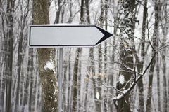 Empty sign in the forrest Stock Photography