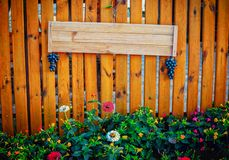 Empty signboard made of planks hanging on a wooden fence. Empty signboard made of planks, decorated with artificial bunches of grapes, hanging on a wooden fence royalty free stock photo