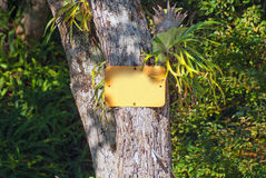 Empty signboard in a tropical forest environment Royalty Free Stock Photo