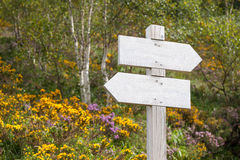 Empty signpost in the mountains Stock Photography