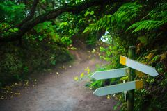 Empty signpost on path in Anaga forest nature reserve. In Tenerife royalty free stock images