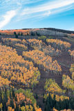Empty ski slopes with autumn colors and blue sky Stock Photos