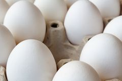 Empty slot among white chicken eggs in cardboard tray closeup Stock Images
