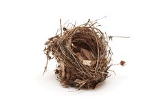 Empty small bird nest isolated Royalty Free Stock Photo