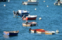 Empty small fishing boats in water Royalty Free Stock Photography
