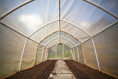 Empty small vegetable greenhouse Stock Image