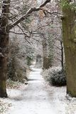 Snow covered path in a park stock images