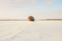 Empty snow covered road in winter landscape Stock Image
