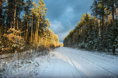 Empty snow covered road in winter landscape Royalty Free Stock Photography