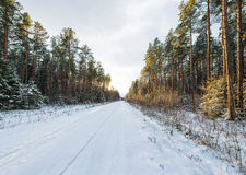 Empty snow covered road in winter landscape Stock Photos