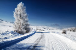 Empty snowy road. And blue sky Stock Photography