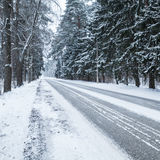 Empty snowy rural road, square photo Royalty Free Stock Photo