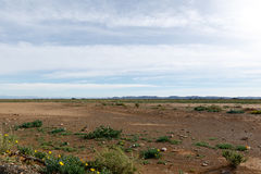 Empty Space with blue clouds in Tankwa Karoo. Empty Landcape with space with blue clouds in Tankwa Karoo Royalty Free Stock Photography