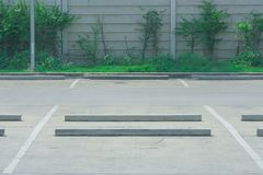 Empty space of car parking lot with green bush in the background at public park. Selective focus Stock Photography