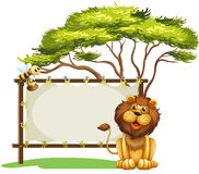 An empty space with a lion and a bee Stock Image