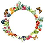 Circle frame from berries. Watercolor hand drawn illustration stock illustration