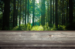 Empty space on a wooden table. Forest in the background Stock Photography
