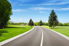 Empty sphalt road and green pine tree Royalty Free Stock Photo