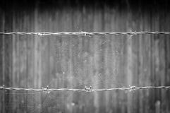 Empty spider web on concentration camp barbwire Stock Photo