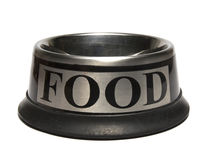 Empty Stainless steel Dog Bowl Stock Photo