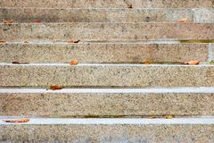 Empty stairs with some dry leaves on it Royalty Free Stock Photo