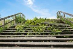 Empty stairway Royalty Free Stock Photos